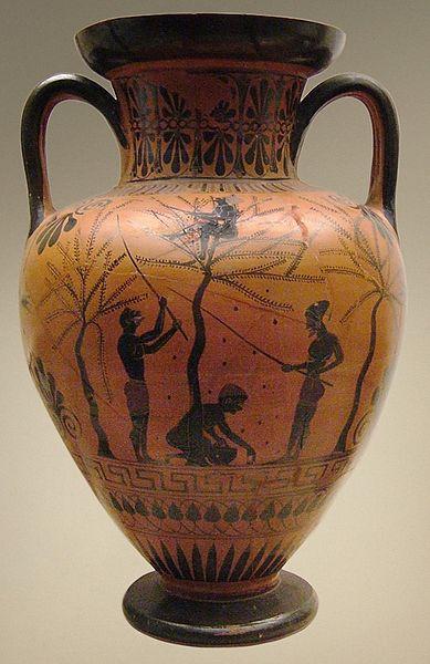Η συγκομιδή της σοδειάς της ελιάς, όπως απεικονίζεται σε μελανόχρωμο αγγείο του 6ου αιώνα, Βρετανικό Μουσείο