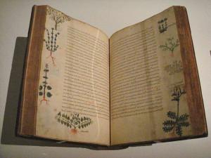 Το πεντάτομο έργο του Διοσκουρίδη «Περί ύλης ιατρικής», που αποτέλεσε μια από τις σημαντικότερες πηγές Φαρμακολογίας μέχρι τον 17ο αιώνα, εδώ σε βυζαντινή έκδοση του 15ου αιώνα.
